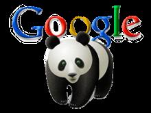 imagen de marca de Google Panda
